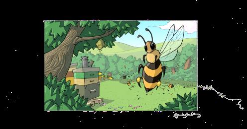 apicolturavalentini